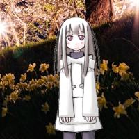 白花の夜明そび